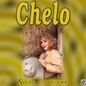 Sigue Como Vas by Chelo