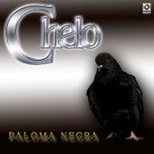 Paloma Negra by Chelo