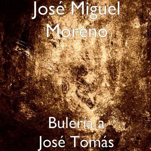 Bulería a José Tomás by José Miguel Moreno