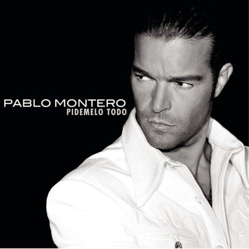 Pidemelo Todo by Pablo Montero