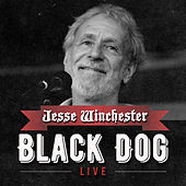 Black Dog by Jesse Winchester