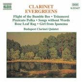 Clarinet Evergreens von Various Artists