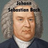 Johann Sebastian Bach: Oratorio di Natale BWV 248 (selezione) by Giovanni Cassani and Accademia Musicale