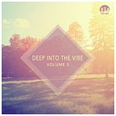 Deep Into the Vibe, Vol. 3 by Various Artists
