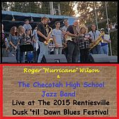 Live at the 2015 Rentiesville Dusk 'til Dawn Blues Festival by Roger Hurricane Wilson