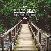 Rock from the Woods by Black Bear
