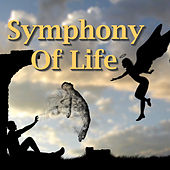 Symphony Of Life by Various Artists