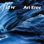 Flow by Ari Erev