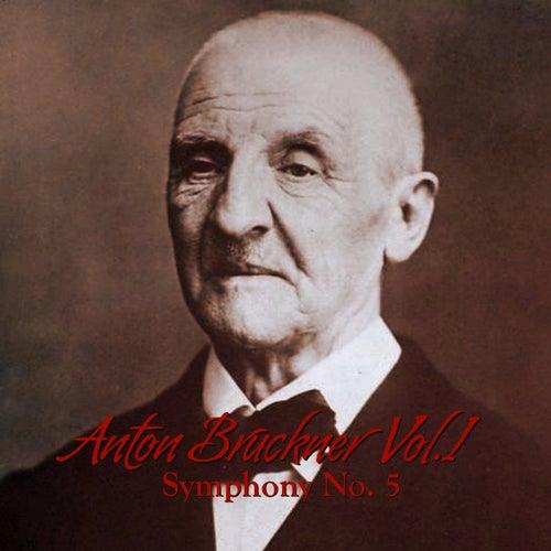 Anton Bruckner Vol. I Symphony No. 5 by South German Philharmonic Orchestra