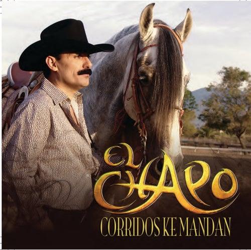 Corridos Ke Mandan by Various Artists