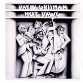 Hot Dawg by David Grisman
