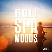 Bali Spa Moods, Vol. 3 (Peaceful Chill Out Music) by Various Artists