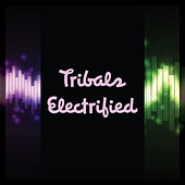 Tribals Electrified by DJ Prince