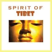Spirit of Tibet by DJ Prince