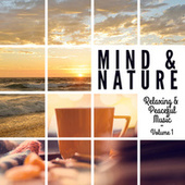 Mind & Nature - Relaxing and Peaceful Music, Vol. 1 by Various Artists