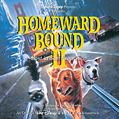 Homeward Bound 2: Lost In San Francisco by Various Artists