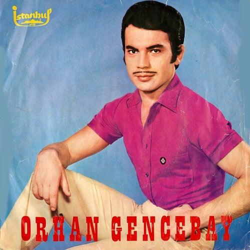 Bir Teselli Ver (45'lik) by Orhan Gencebay