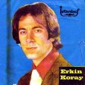 Anma Arkadaş (45'lik) by Erkin Koray