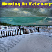 Busting In February von Various Artists