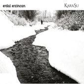 Karasu by Erdal Erzincan