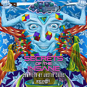 Secrets of the Insane by Various Artists