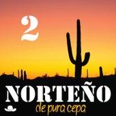 Norteño de Pura Cepa, Vol. 2 by Various Artists