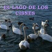 El Lago de Los Cisnes by Philharmonia Slavonica