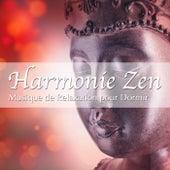 Harmonie Zen: Musique de Relaxation pour Dormir et Relax avec Sons de la Nature by Various Artists