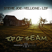 Top of the A.M. (feat. Vellione & Ldf) by Stevie Joe