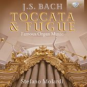 J.S. Bach: Toccata & Fugue - Famous Organ Music by Stefano Molardi