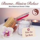 Buena Música Relax: Música para Descansar Relajante para Trabajar by Various Artists
