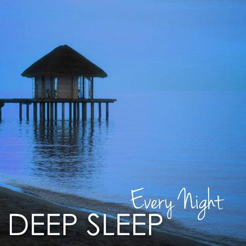 Deep Sleep Every Night - Music for a Deeper Sleep Experience by Sleep Music System