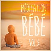 Méditation pour bébé, Vol. 3 (Musique douce et paisible pour bébé) by Various Artists