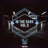 In the Dark, Vol. 5 by Various Artists