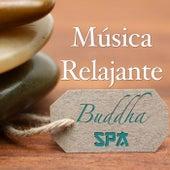 Spa Buddha: Música Relajante para una Terapia de Relajación de Spa y Salon de Belleza para Tu Paz Interior by Various Artists