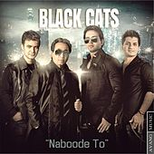 Naboode To by Black Cats
