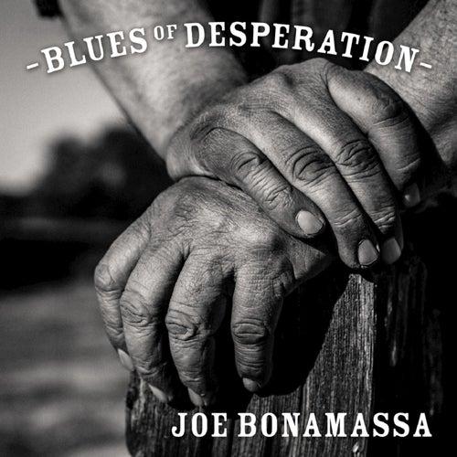 Drive by Joe Bonamassa