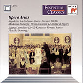 Opera Arias (Rigoletto, La Bohème, Tosca, Norma, Otello, etc.) by Various Artists