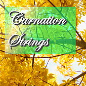 Carnation Strings by Various Artists