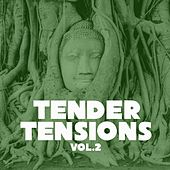 Tender Tensions, Vol. 2 by Various Artists