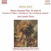 Piano Sonatas / Fantasia / Variations by Wolfgang Amadeus Mozart
