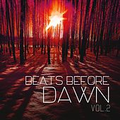 Beats Before Dawn, Vol. 2 by Various Artists