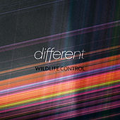 Different by Wildlife Control