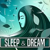 Sleep & Dream by Various Artists