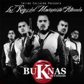 Los Reyes del Movimiento Alterado [Explicit] by Los Buknas De Culiacan