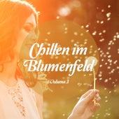 Chillen im Blumenfeld, Vol. 3 (Relaxing Music) by Various Artists