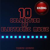 Collection of Electronic Music, Vol. 10 by Various Artists