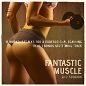 Fantastic Muscle, Vol. 2 (20 Workout Tracks For A Professional Training) by Various Artists