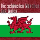 Die schönsten Märchen aus Wales (Walisische Märchen) by Jürgen Fritsche