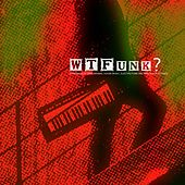 Wtfunk? (Panorama of Deep Minimal House Music, Electro Funk and Berlin Dub Techno) by Various Artists